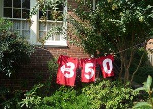 350 shirts